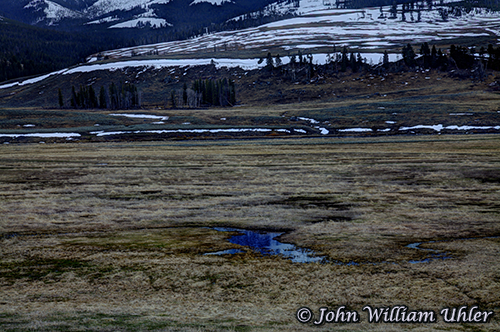 Lamar Valley taken Spring 2019 ~ © Copyright All Rights Reserved John William Uhler