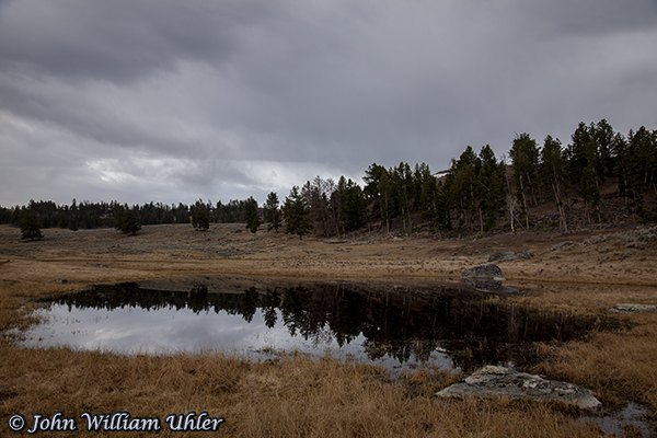 Glacial Pond Reflection in Yellowstone taken Spring 2019 in Yellowstone © Copyright All Rights Reserved John William Uhler