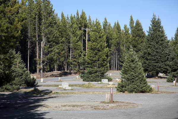 Fishing Bridge Rv Campground Information Map Pictures
