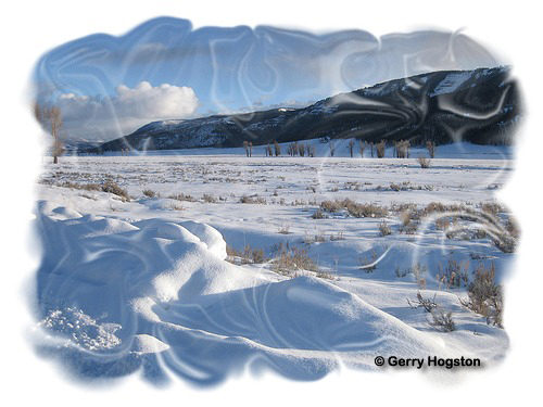 Lamar Valley Yellowstone National Park ~ © Copyright All Rights Reserved Gerry Hogston