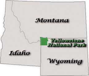 Yellowstone National Park Location Yellowstone Up Close